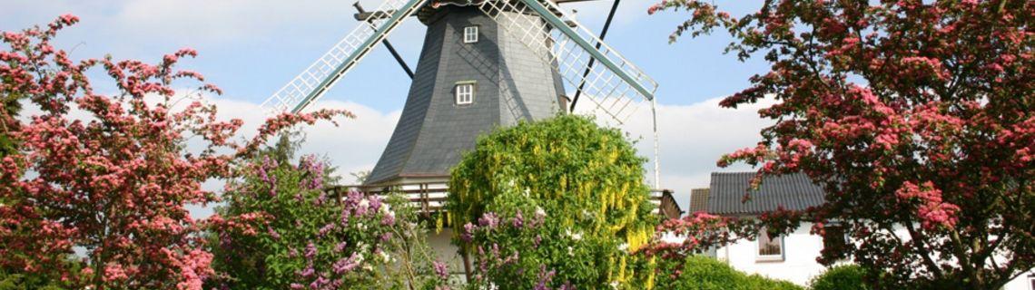 Bild von der Mühle in Tarp als Kopfbild der Website